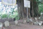 Batu tempat duduk pemimpin Minang untuk bermusyawarah.